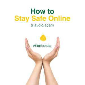 Read more about the article How to Stay Safe Online & Avoid Scam