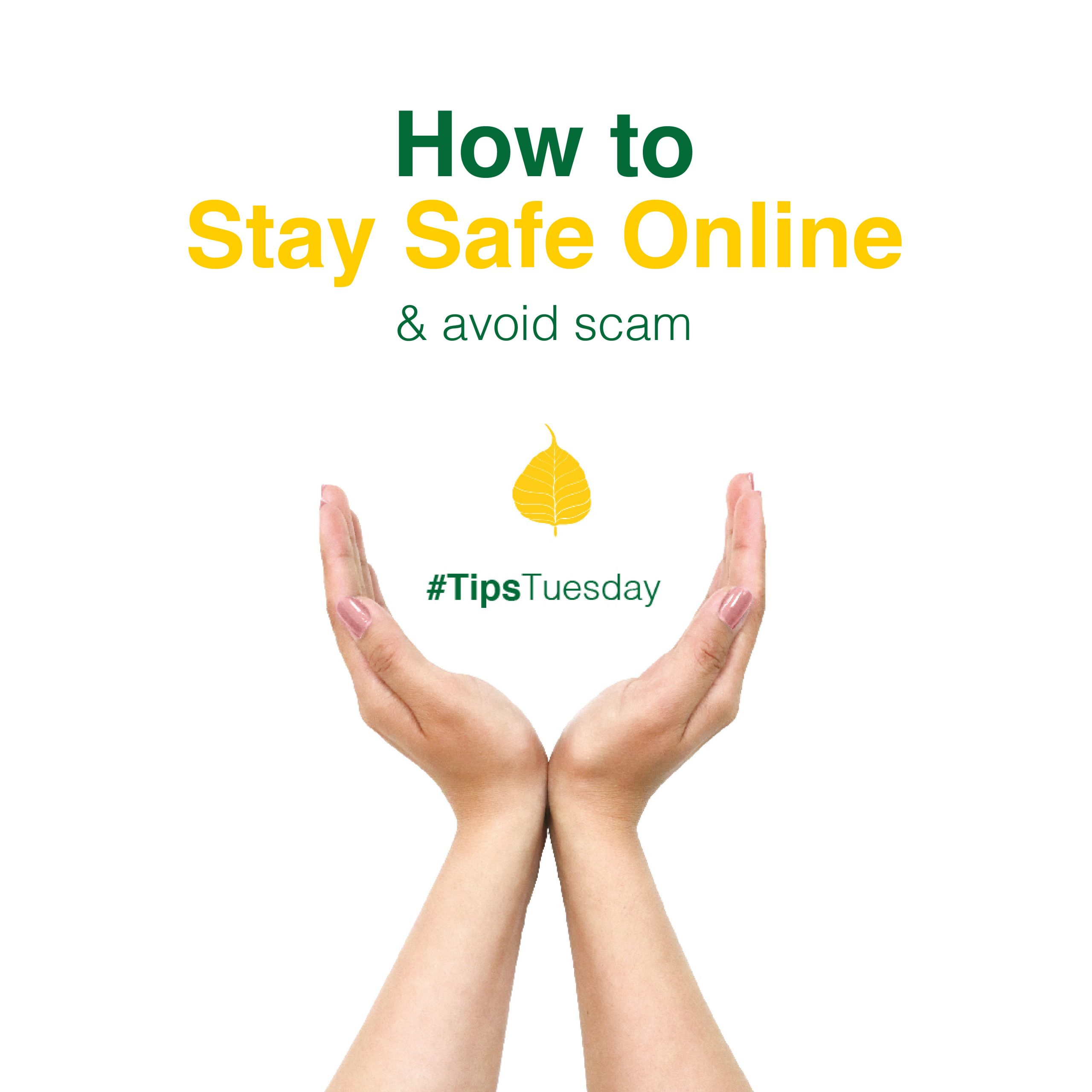 How to Stay Safe Online & Avoid Scam