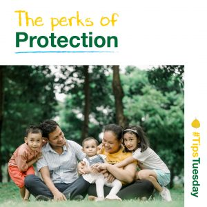 Read more about the article The perks of protection
