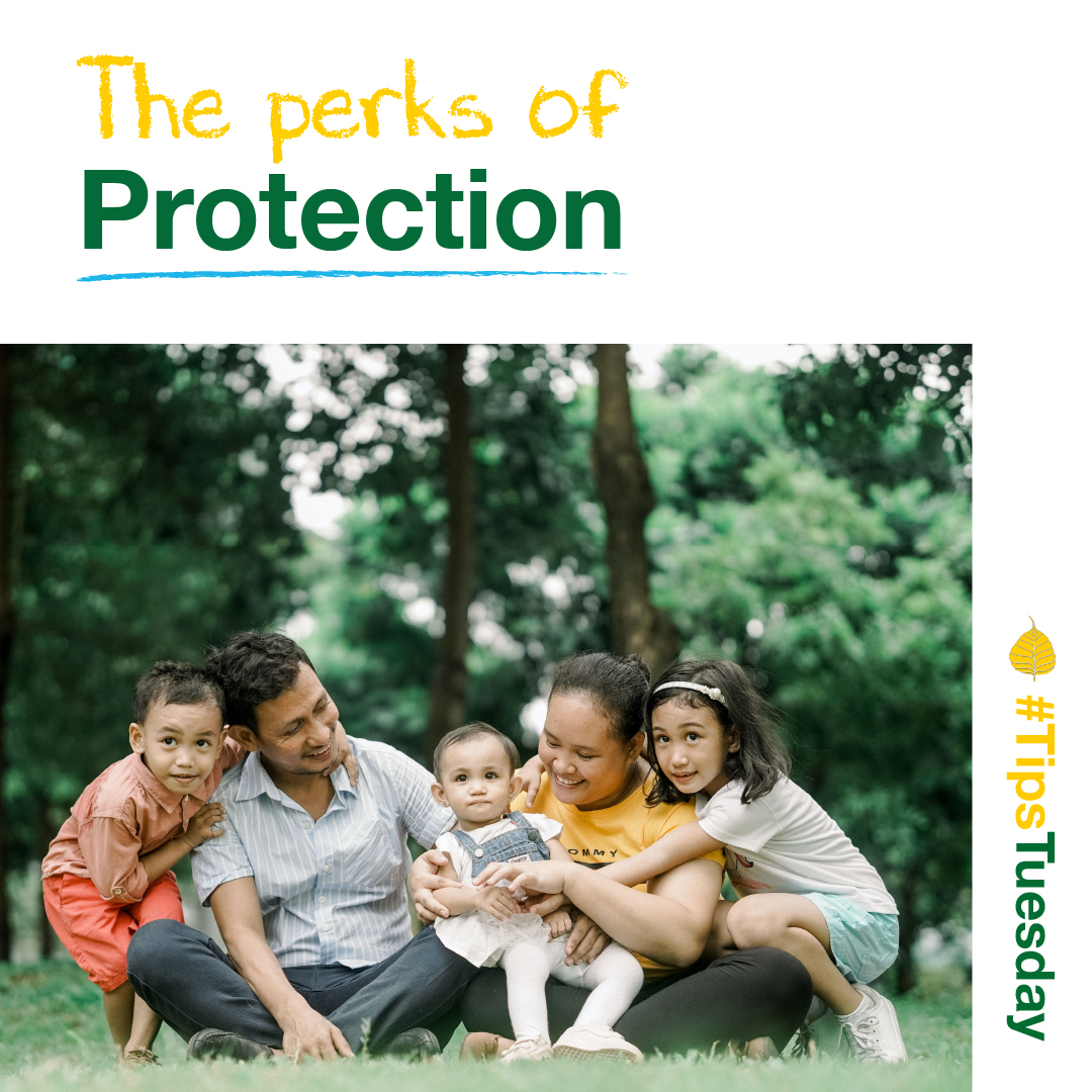 You are currently viewing The perks of protection