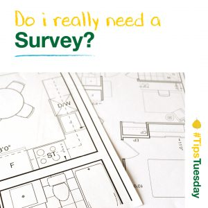Read more about the article Do I really need a survey?